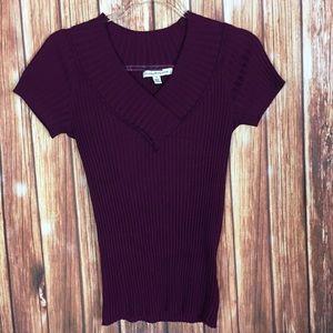Debbie Morgan Purple Ribbed Knit VNeck Sweater Top